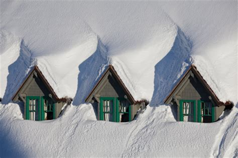 mount rainier in winter: foxes, gables, and clarity | lee