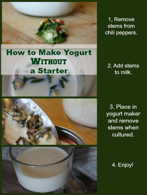 how to make it how to make yogurt without a starter it takes time via