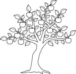 apple tree coloring page apple tree pictures to color az coloring pages