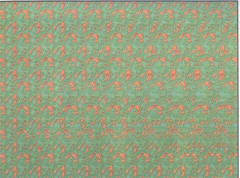imagenes opticas ocultas figuras escondidas en las imagen imagenes ocultas
