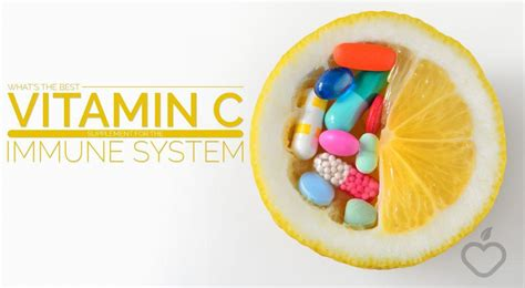 supplement vitamin c what s the best vitamin c supplement for the immune system