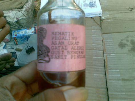 obat tradisional akar pasak bumi minyak lintahminyak