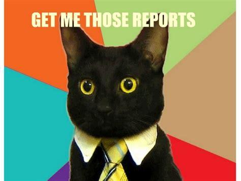Working Cat Meme - working cat meme 28 images grumpy cat 7 jpg get back
