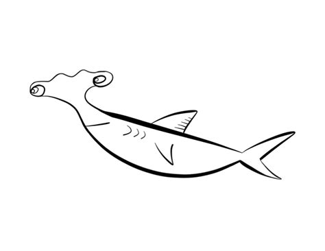 hammerhead shark coloring page colordad