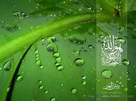 wallpaper in free download islamic hd wallpapers free download windows 10 wallpapers