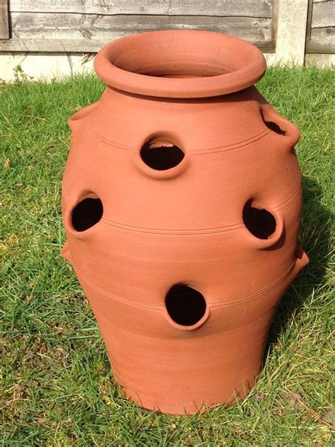 terracotta strawberry planter large terracotta strawberry planter for sale in woking