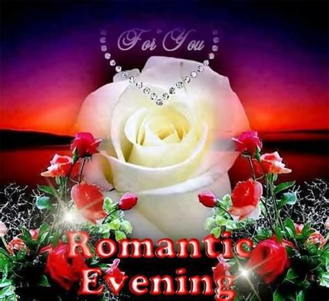 Best Romantic Evening With White Rose Good Evening Wishes