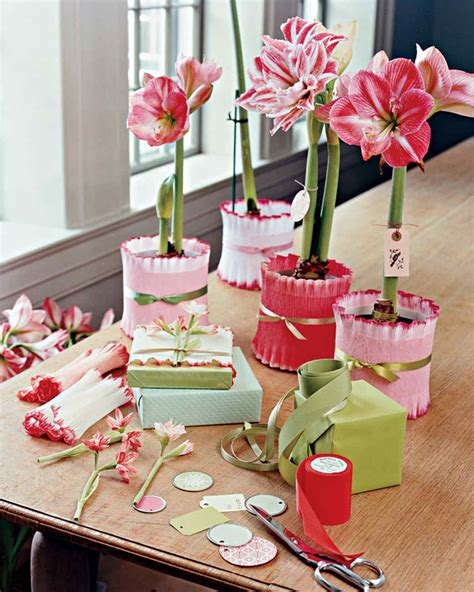 potted paper flower ideas potted amaryllis gift wrap martha stewart