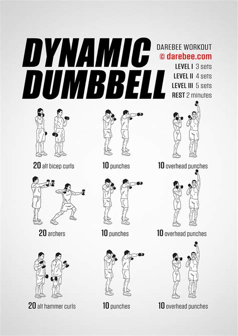 best 25 dumbbell workout ideas on dumbbell