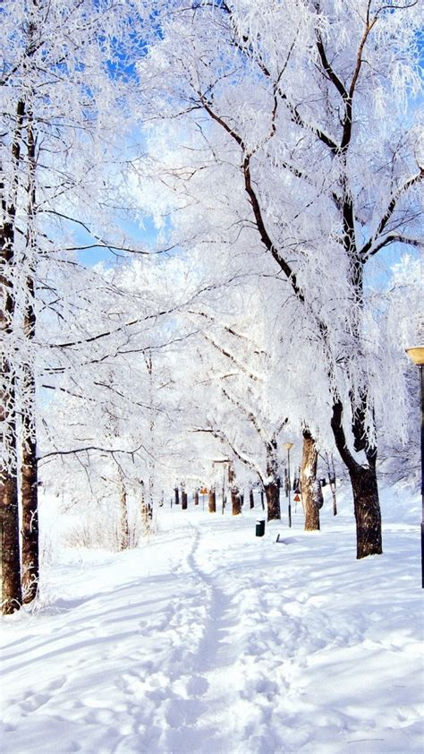 christmassnow pictures for iphones winter iphone wallpaper