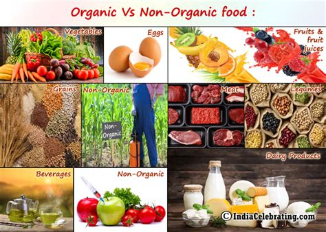 Organic Food Meaning Examples List Health Benefits