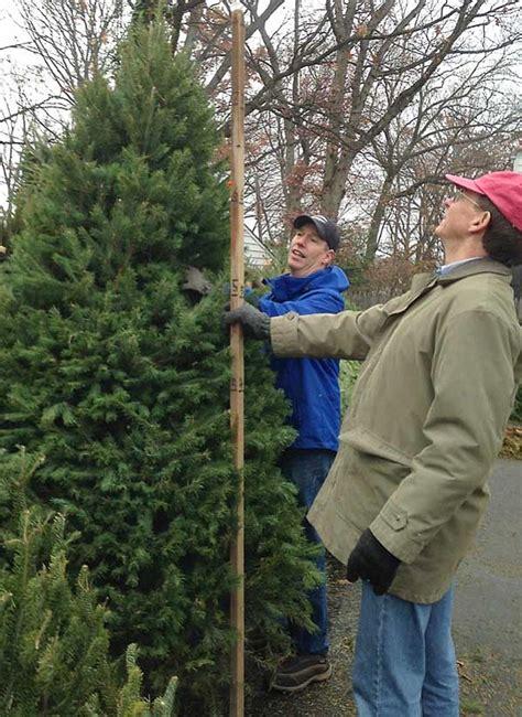 alexandria north ridge annual community tree sale