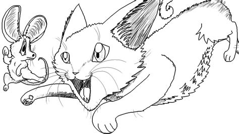 cartoon cat chasing  mouse speed drawing youtube