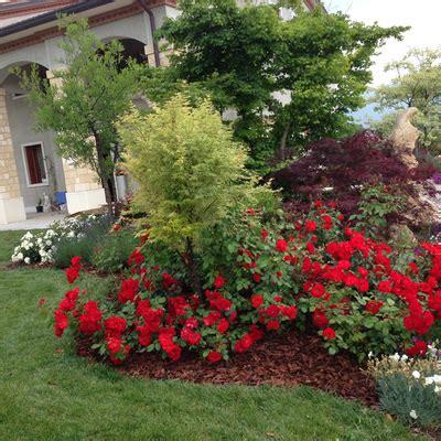 giardini colorati consigli e prezzi per progettare un giardino di casa