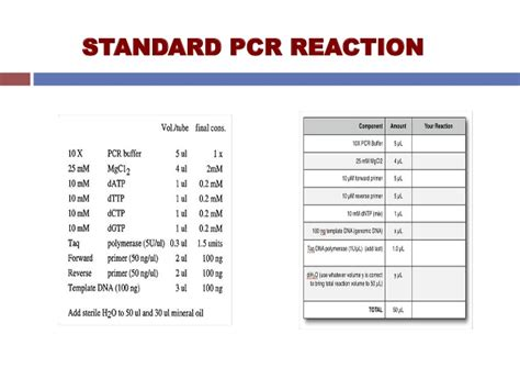 how much template dna for pcr pcr polymerase chain reaction