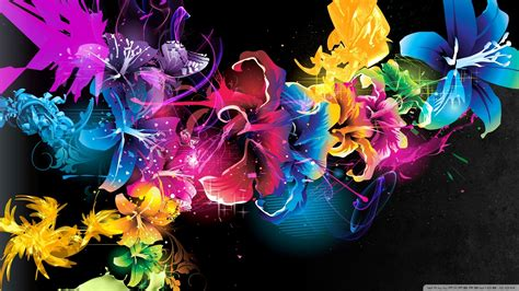 wallpaper flower colourful download colorful flowers 8 wallpaper 1920x1080