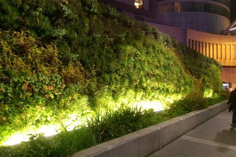 green wall lighting  guide  maintaining  living wall