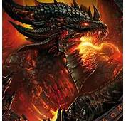 Griffins And Dragons Images Its A Dragon In Knights Armour