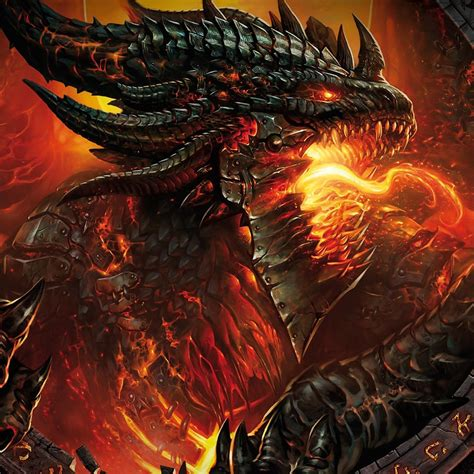 the dragon the griffins and dragons images its a dragon in knights armour hd wallpaper and background