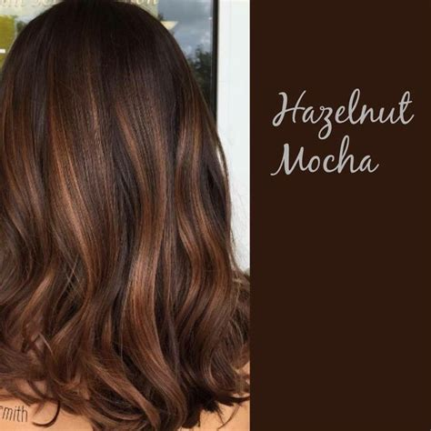 colors to dye brown hair 25 best ideas about mocha hair on hair