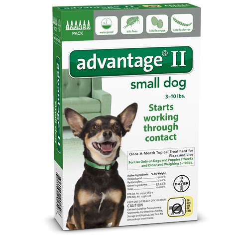 flea treatment for puppies 12 weeks 6 month advantage ii flea small for dogs 10 lbs