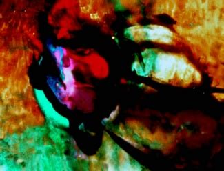 By Brakhage An Anthology Volumes One And Two Criterion by brakhage an anthology volumes one and two dvd talk review of the