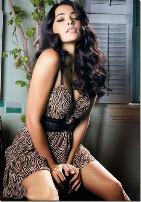 top 10 sexiest hollywood actresses hot women in hollywood top 10 hottest actresses in hollywood sri krishna