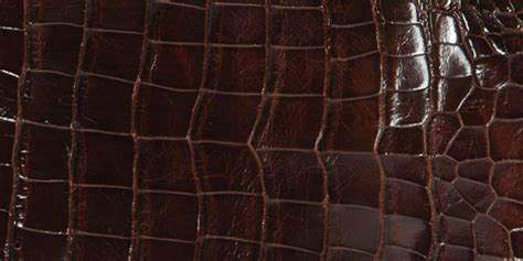 skin for sale alligator skin and python skin for sale pan american