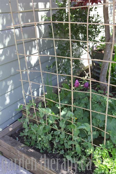 Build A Bamboo Trellis how to make a diy bamboo trellis