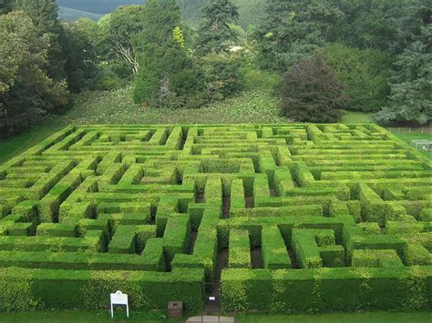 maze house file traquair house maze jpg wikimedia commons