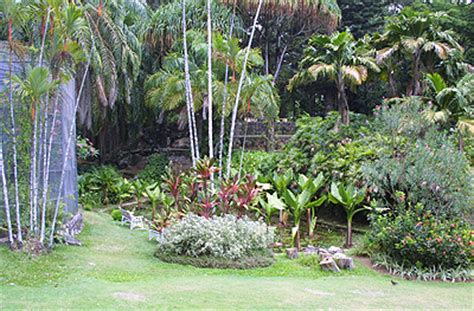Seychelles National Botanical Gardens Seychelles National Botanical Gardens Seychelles Tourist