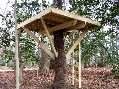 building a house tips tree house building plans awesome how to build a tree