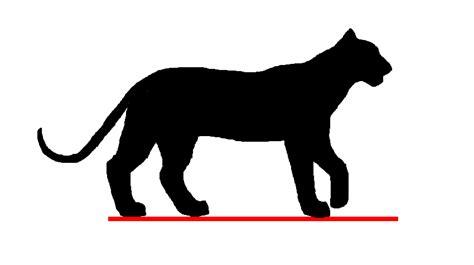 animasi harimau gerak jalan  alamendahs blog