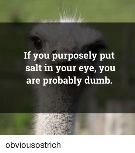 how do you put highlights in salt and pepper hair 25 best memes about salt salt memes