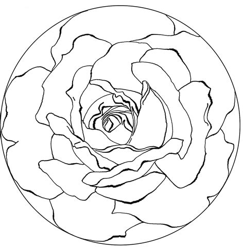 intricate spring coloring pages spring printable mandalas cool images