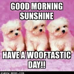 Cute Good Morning Meme - cute good morning sunshine meme www pixshark com
