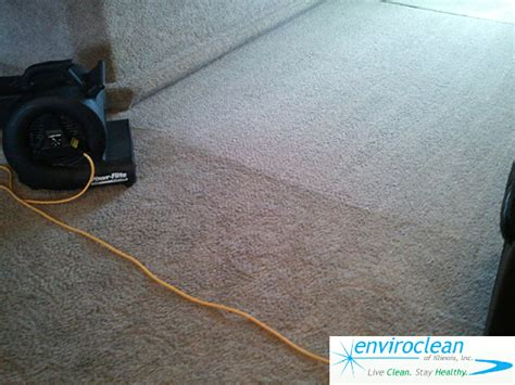 upholstery cleaning chaign il barrington il carpet cleaner enviroclean of illinois