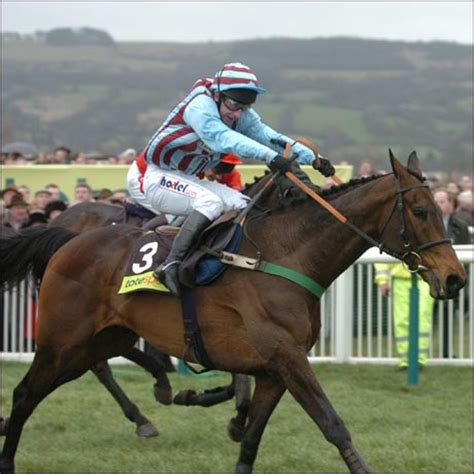best mate best mate makes gold cup history hound