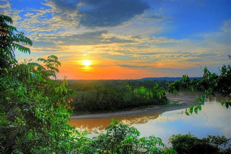 amazon travel amazon rainforest amazons amazon rainforest and rainforests