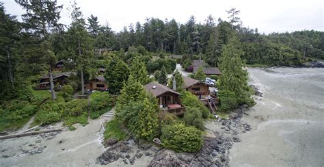 cabins for rent in tofino