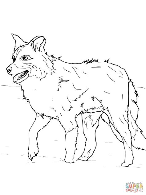 sheep dog coloring page scotch sheep dog or border collie coloring page free