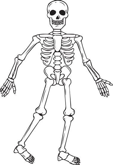 human skeleton free colouring pages