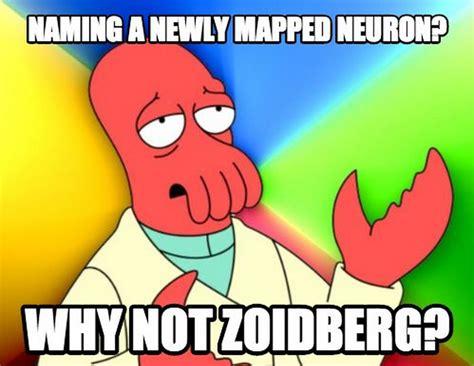 Zoidberg Meme - the zoidberg neuron