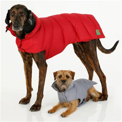 coats for dogs canine styles puffer coat the green
