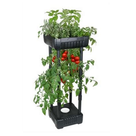 Standing Herb Planter by Flambeau Patio Garden Compact Tomato Herb
