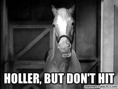 Mr Ed Meme - mr ed holler but dont hit