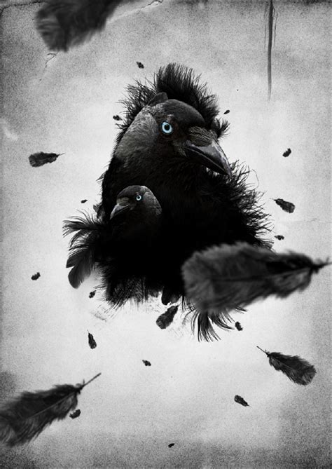 create a feathered crow illustration
