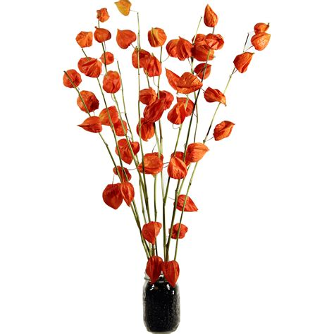 Decorative Wreaths For The Home by Fruits Pods Japanese Lanterns Physalis