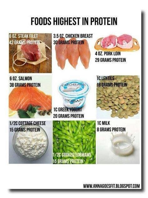 protein heavy foods 17 best images about food facts on heavy metal