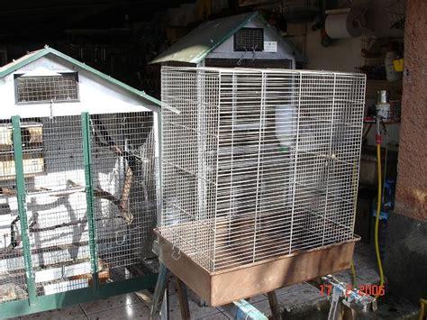 gabbia scoiattoli gabbia per scoiattoli fai da te 28 images la gabbia